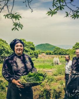 Cucina sostenibile a chilometro zero