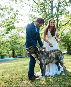 Matrimonio civile nel castagneto